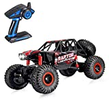 Theefun 1:12 4WD High Speed RC Crawler 2.4Ghz Off-Road Remote Control Monster Truck