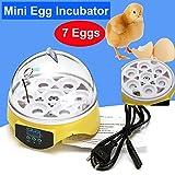 FidgetKute Mini Digital Eggs Incubator for Hatching 7 Eggs Chicken Duck Reptile AC 220V