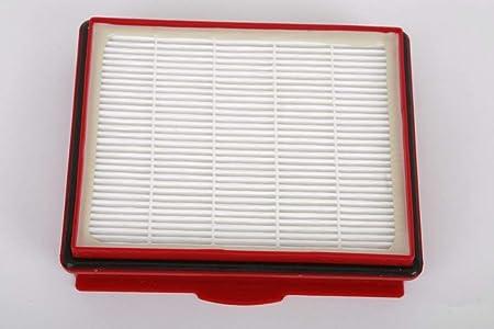 Filtro HEPA para Electrolux D 820, Elektrolux Lux 1.: Amazon.es: Hogar