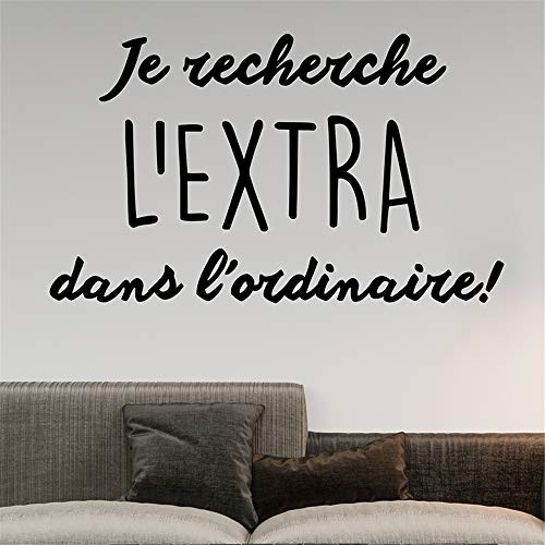 Zaidao Vinyl Decal Quote Art Wall Sticker Mirror Decal French Quote Je Recherche L'Extra Dans L'Ordinaire for Living Room Bedroom ()