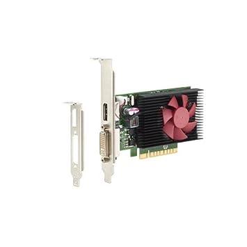 Amazon.com: 2 GB HP NVIDIA GeForce GT730 GFX PCI-E x8 DVI ...