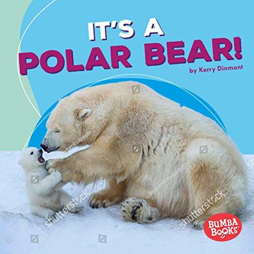It's a Polar Bear! (Polar Animals: Bumba Books) Baby Seal Fur