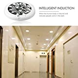 Smart Home Smart Human Motion Sensor LED Ceiling Lights For Hallway Stairs Kids Room Ceiling Lamps (7W)