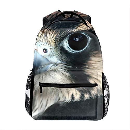 Animal Peregrine Falcon Birds Of Prey School Travel Backpack for Boys ()