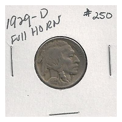 1929-D Buffalo Nickel in 2x2 holder #250: Everything Else