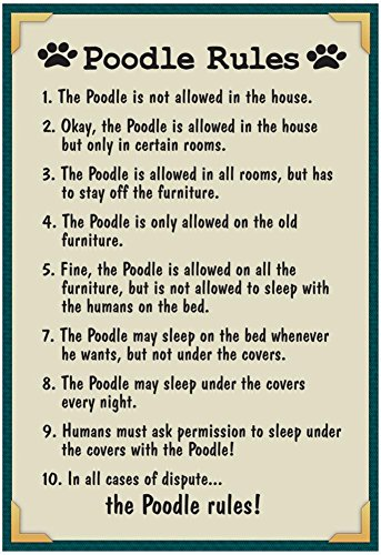 Poodle House Rules Poster with Hanger