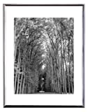 Best MCS Digital Photo Frames - MCS 8x10 Inch Floating Flex Frame, Silver (24331) Review