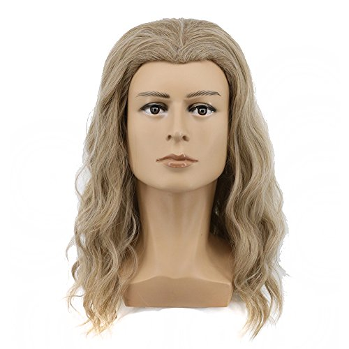 (Yuehong Long Blonde Wig Men Party Wig For Cosplay Costume Halloween Hair)