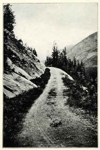 1901 Print Mountain Road Banff National Park Canada Scenic Trail Forest Nature - Original Halftone - Canada Ban