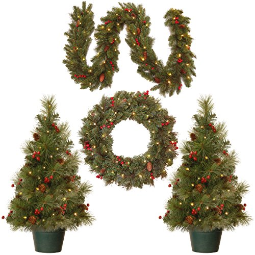 National Tree Holiday Decorating Assortment with 2 3 Foot Entrance Trees, 1 9 Foot by 8 Inch Garland and 1 24 Inch Wreath all with Warm White Battery Operated LED Lights (ED7-PRO-ASST) (Porch Indoor Decorating)