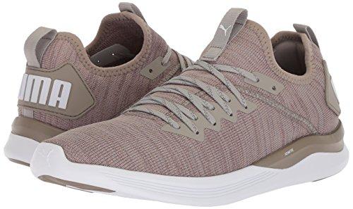 PUMA Men's Ignite Flash Evoknit Sneaker