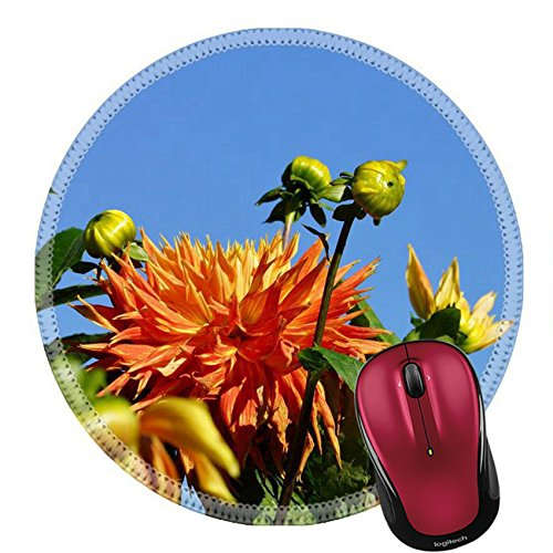Growing Dahlia Flowers (Liili Round Mouse Pad Natural Rubber Mousepad IMAGE ID 32237959 Beautiful Dahlia)