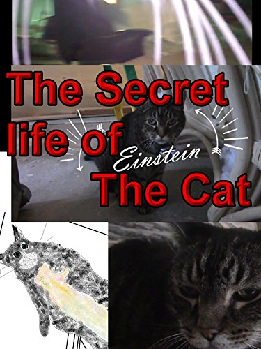 The Secret life of Einstein the Cat (Mr Putter And Tabby See The Stars)
