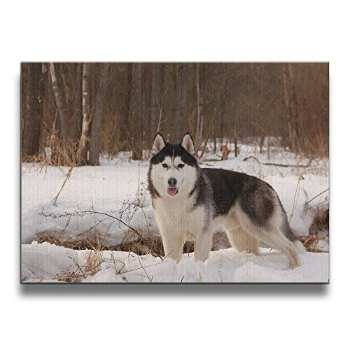 Alive Husky (Shannon Brownrices Siberian Husky Decoration Frameless Decor Canvas Wall Art Painting For Home,Living Room,Bedroom,office Modern Decoration 1620 Inches)