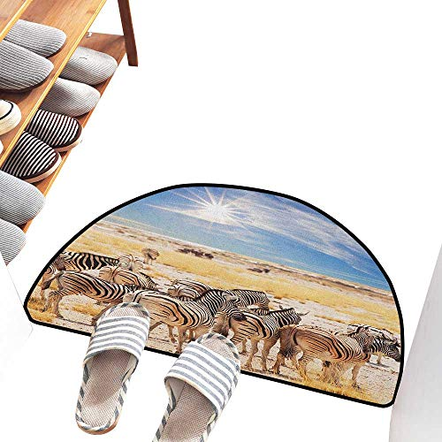 Bedroom Doormat Africa Zebras in Savannah Desert Waterhole on Hot Day Africa Safari Adventure Land Print Suitable for Outdoor and Indoor use W36 xL24 Multicolor