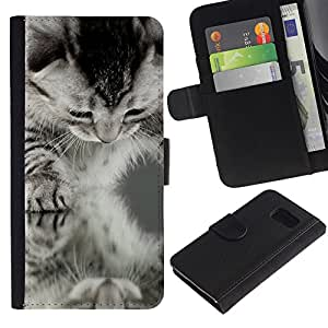 EuroCase - Samsung Galaxy S6 SM-G920 - American shorthair curl black white kitten - Cuero PU Delgado caso cubierta Shell Armor Funda Case Cover