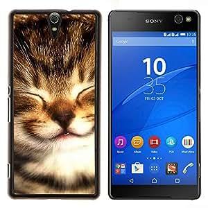 EJOOY---Cubierta de la caja de protección para la piel dura ** Sony Xperia C5 Ultra ** --Maine Coon gatito Pequeño bebé Selkirk