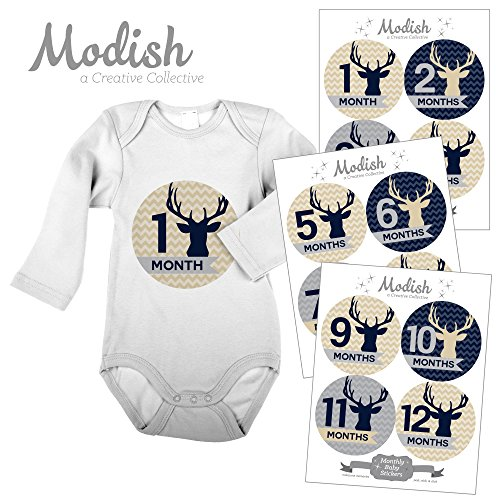 Modish Labels, 12 Monthly Baby Stickers, Baby Boy, Woodland, Deer, Antlers, Buck, Baby Month Stickers, First Year Stickers, Chevron, Tan,...