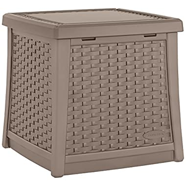 Suncast ELEMENTS® End Table with Storage, Dark Taupe