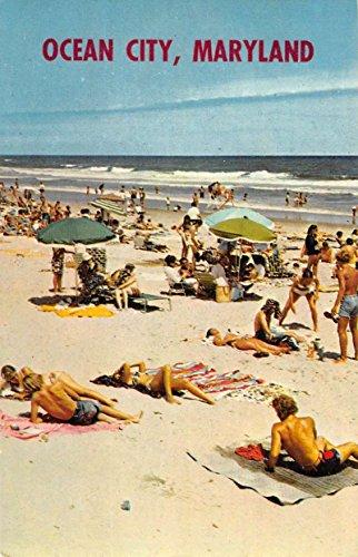 Ocean City Maryland Bathing Beach Scene Greeting Vintage Postcard K94947