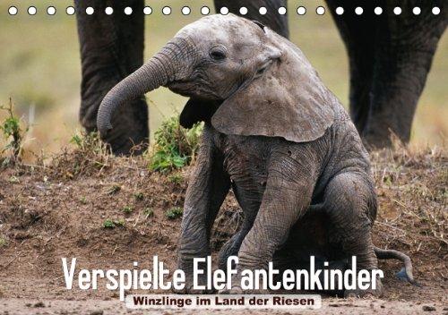 Verspielte Elefantenkinder – Winzlinge im Land der Riesen (Tischkalender 2015 DIN A5 quer): Afrikanische Elefantenbabys spielen im Schutz Ihrer Herde (Tischkalender, 14 Seiten)