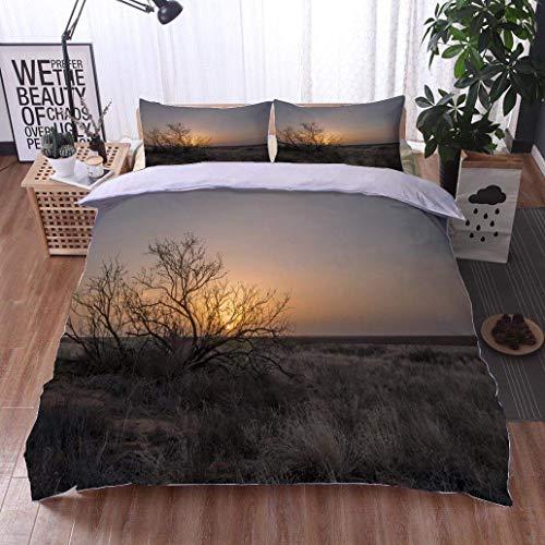 (VROSELV-HOME Modern Pattern Printed Duvet Cover,Mesquite Bush at Seminole Texas,Soft,Breathable,Hypoallergenic,Soft Microfiber Bedspread Coverlet Bedding)