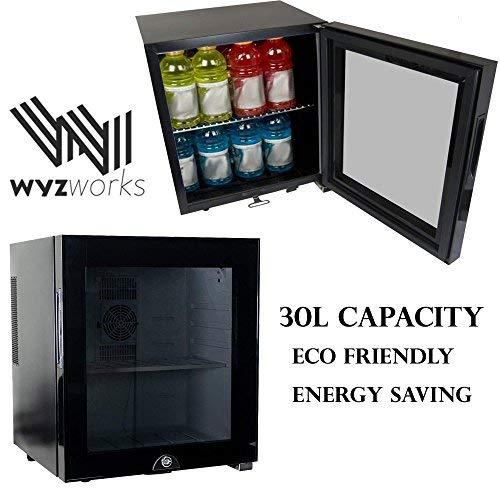 WYZworks 30L Stainless Steel Refrigerator Semiconductor Energy Saving Environmentally Friendly Locking Glass Door Wine Spirits Beer Cooler Fridge Black