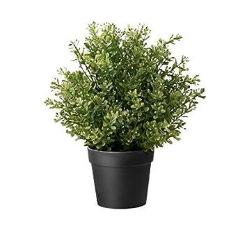 Ikea Plante Artificielle En Pot Thym 24 1 Cm Amazon Fr