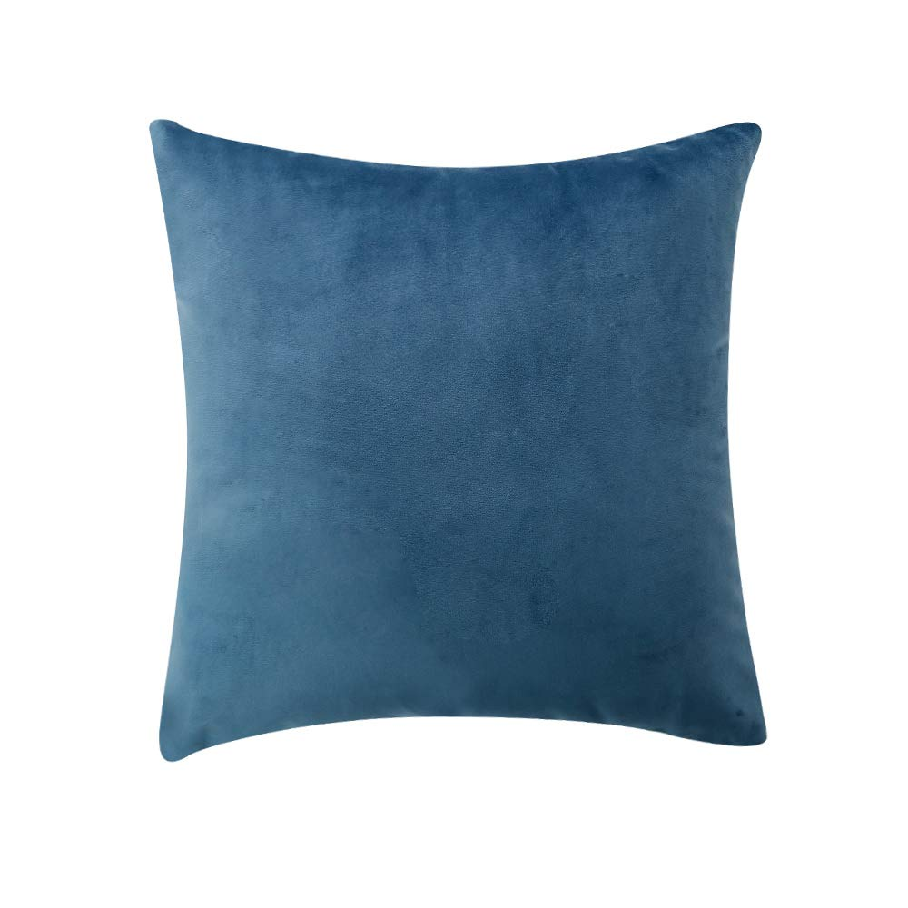 Pack of 2 Velvet Throw Pillow Cover, Solid Decorative Cushion Cover Hidden Zipper Soft Euro Sham for Sofa Bedroom Car Office(Light Blue 12×20) yuanmou 12×20