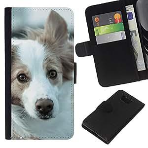 Border Collie Husky Corgi Dog Pet Canine - la tarjeta de Crédito Slots PU Funda de cuero Monedero caso cubierta de piel Samsung ALPHA G850