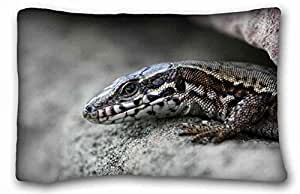 Custom Animal Custom Cotton & Polyester Soft Rectangle Pillow Case Cover 20x30 inches (One Side) suitable for Queen-bed