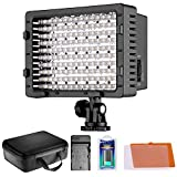 Neewer CN-160 LED Video Light Lamp Panel Dimmable for DSLR Camera DV Camcorder  1 CN-160 LED Light + 1 2600MAH NP-F550 Battery + 1 AC Wall Charger with Car Adapter + 1 Case