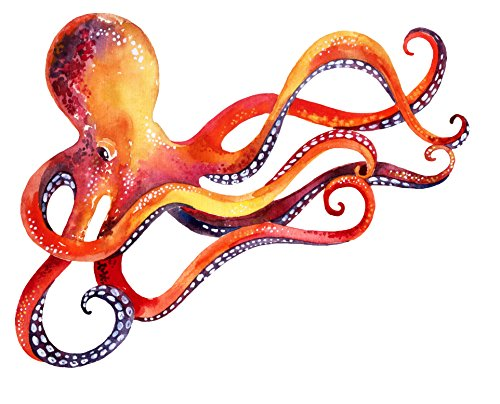 Cheap  Orange Red Dancing Watercolor Paint Octopus Vinyl Decal Sticker (4