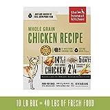 The Honest Kitchen Alimento deshidratado para perros de grano orgánico de grado humano, 10 lb (makes 40 lbs)