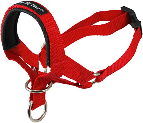 (Dog Head Collar Halter Red 6 Sizes (S: 6.5