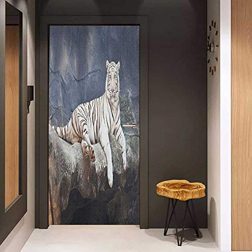 - Onefzc Automatic Door Sticker Tiger Albino Cat Sitting on Rock Sublime Nature Marvelous Animals Endangered Species Easy-to-Clean, Durable W17.1 x H78.7 Slate Blue White