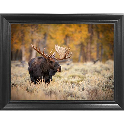 Moose 3D Poster Wall Art Decor Framed Print | 14.5x18.5 | Lenticular Posters & Pictures | Memorabilia Gifts for Guys & Girls Bedroom | Natural Wildlife & Animal Landscape Picture for Home ()