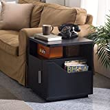 Furniture of America Modern Jules Black Storage End Table. Compact End Table with Multiple Storage Compartments. Open Shelf with Center Divider Creates a Space for Decor or Smaller Necessities