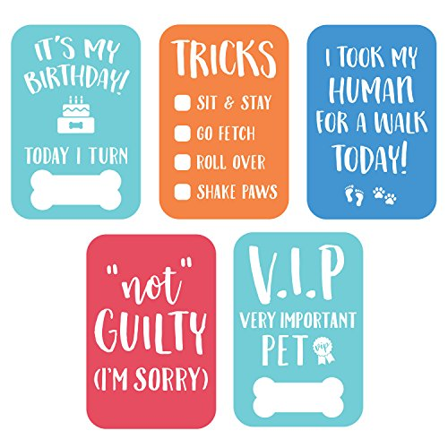 Pearhead 83024 Pet Milestone Photo Cards