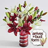 Royal Lilies - Christmas Floral Arrangements - Christmas Flower Bouquets - Christmas Centerpieces - Christmas Gift Ideas 2017 - Flowers by The Shopstation