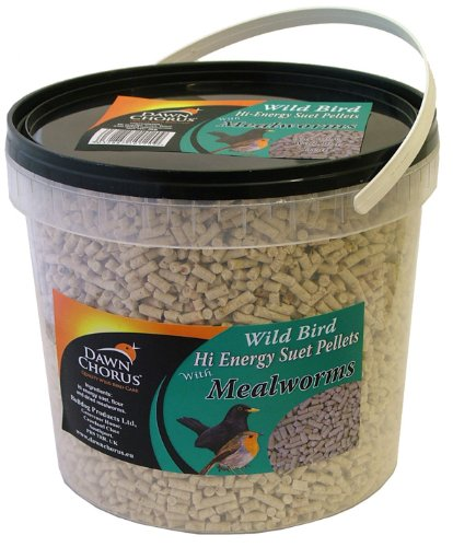 Dawn Chorus Wild Bird Hi Energy Suet Pellets with Mealworms, 3 kg 109152956