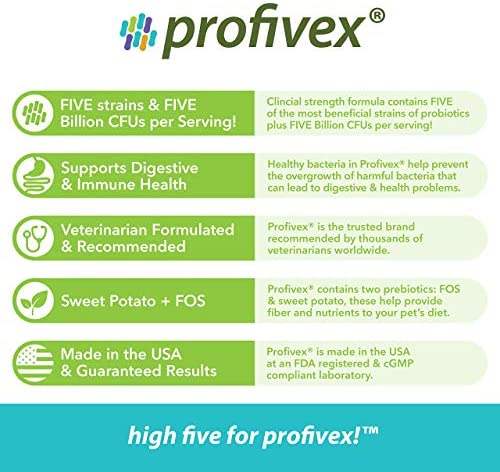 Glandex 60ct Peanut Butter Fiber Supplement with Profivex 30ct Pet Probiotic Soft Chews 10