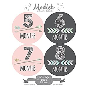12 Monthly Baby Stickers, Pink, Gray, Tribal, Arrows, Chevron, Baby Month Stickers Girl, Baby Book Keepsake, Baby Shower Gift 7