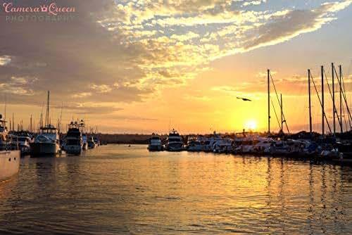Amazon.com: San Diego Marina Sunset: Handmade