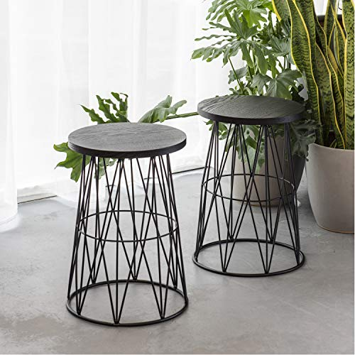 (Art Leon Round End Table Wood Top with Metal Frame Coffee Side Table Indoor/Outdoor for Living Room Small Spaces, Set of 2)