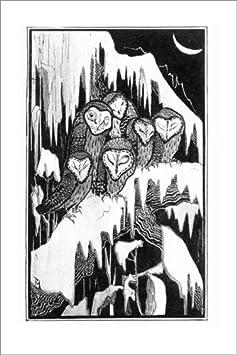 Posterlounge Cuadro de metacrilato 60 x 90 cm: Six Barn Owls Sleeping on Snow-Covered Branches de Theo Van Hoytema