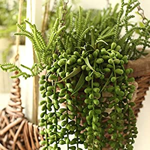 Artiflr Artificial Hanging Plants Fake Succulents String of Pearls Fake Hanging Basketplant Lover's Tears Succulent Branch for Home Kitchen Office Garden Wedding Decor 4