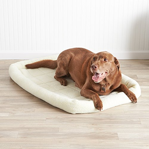 AmazonBasics Padded Pet Bolster Bed - 40 x 26 inches