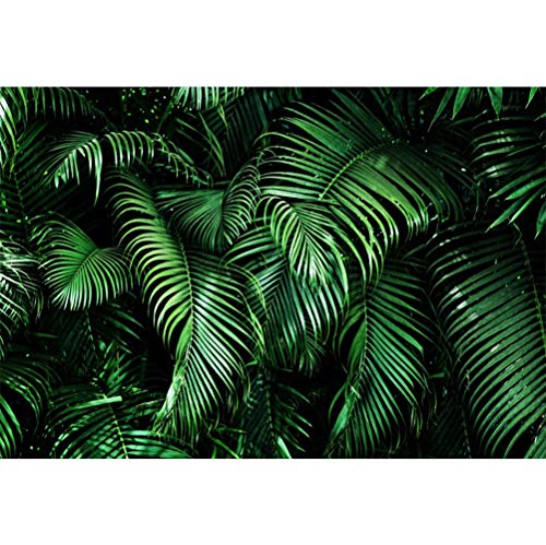 Laeacco 10x8ft Green Tropical Leaves Layout Vinyl Photography Background Foliage Botanic Backdrop Wedding Photo Shoot Summer Party Wallpaper Exotic Studio -