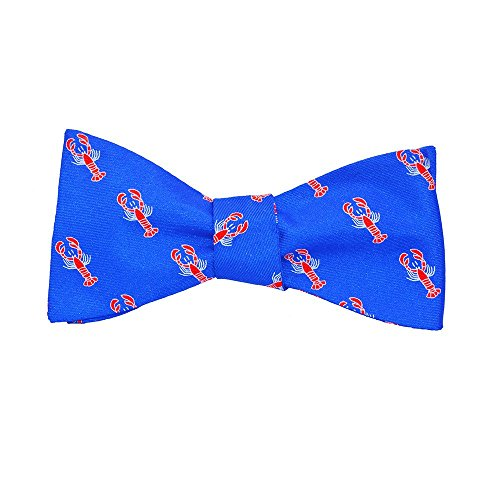 SummerTies Printed Silk Bow Tie